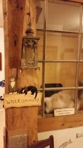 Cats Corner Katzenhotel